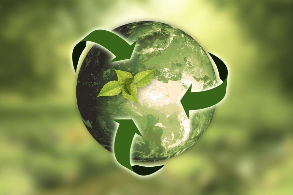 Va PayPal economía sostenible luego de la crisis del COVID-19