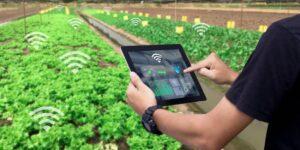 Danper y Wayra presentan Danper Challenge a favor de la agroindustria
